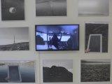 Frontiers of Solitude, Gallery Školská, 2015