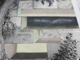 Envelope, b/w  photograph, colored sands (detail)