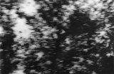 b/w photography, 65 x 100 cm