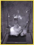 #01, ze série Undated, 2011, 55x73 cm